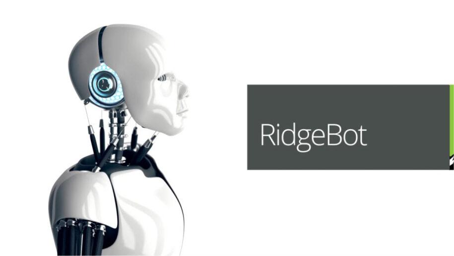 ridge-security